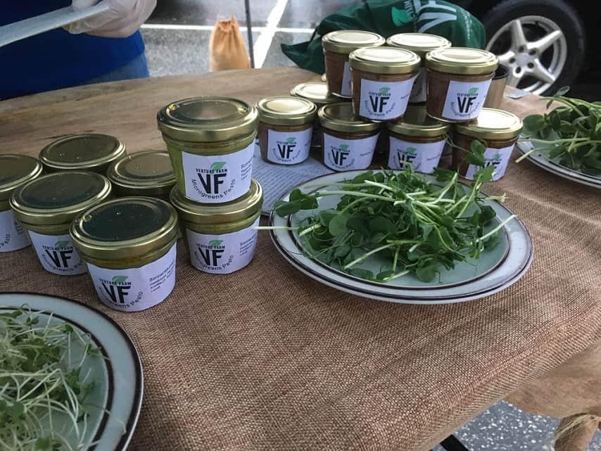 Entwicklung von unserem Rohkost Microgreen Pesto