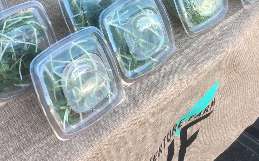Verpackungen aus Biokunststoff