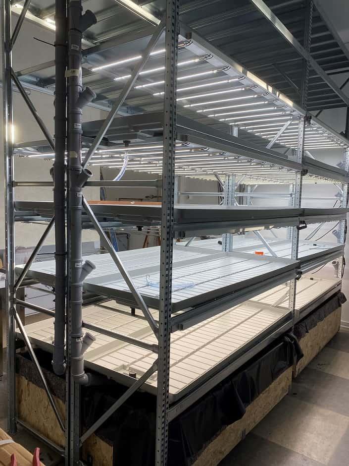 Neue und größere Indoor Farm